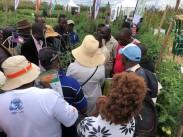 Agritech Expo Zambia4